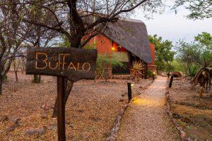 Jamila Lodge Buffalo Room pathway