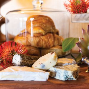 Jamila Lodge Mouth-watering Cheese Selections