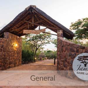 Jamila Lodge Gallery - General