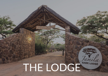 Jamila Home Page Main Button - The Lodge